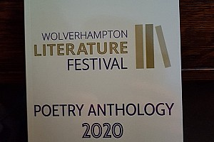 SYLVIA'S VISION OF DEFEATING BEES                                                         - Shortlisted for Wolverhampton Literature Festival Poetry Competition 2020 & included in Festival Poetry Anthology-